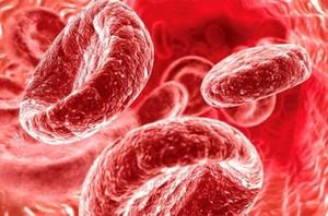 Какова норма гемоглобина в крови