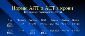 АЛТ и АСТ  - что означают эти цифры