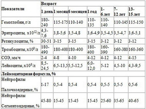 Норма тромбоцитов у человека - анализ крови