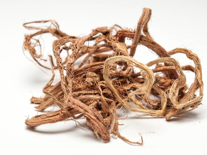Красный корень лечебные свойства и противопоказания