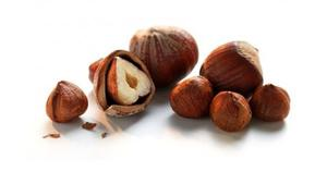 Плоды лещины - орех фундук