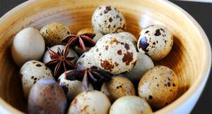 Свойства перепелинных яиц