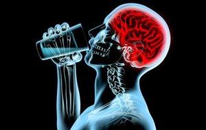 Последствия алкоголя на клетки женщины и мужчины